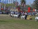 Cierre de la Expo Prado 2017