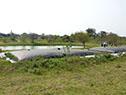 Laguna de saneamiento de Belén