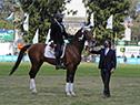 Una vez culminada su alocución, el presidente bajó al ruedo de la Expo Prado para hacer entrega los premios a los ganadores